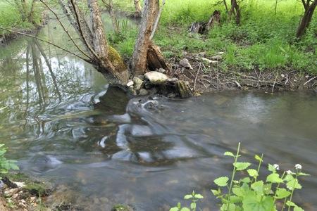 La boivre est une rivière qui coule dans les départements des deux
